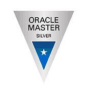 Oracle Master Silverのバッチ見本。銀色の逆三角形で中央が青い図形。